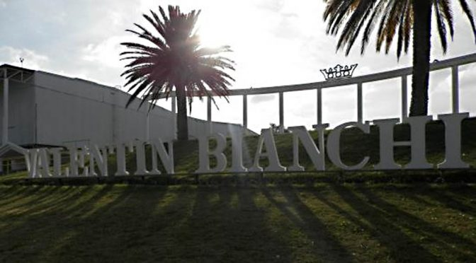 2011 Bodegas Valentin Bianchi, Enzo Bianchi, Mendoza, Argentina