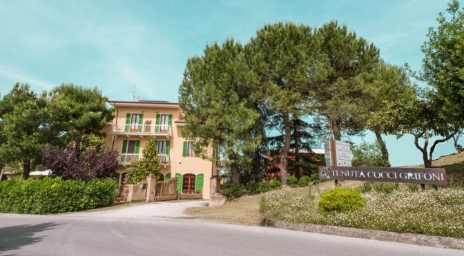 2004 Tenuta Cocci Grifoni, Vigna Messieri Rosso Piceno Superiore, Marche, Italien