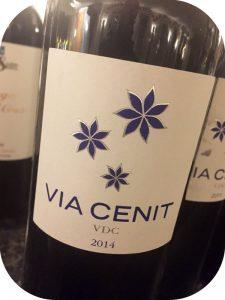 2013 Viñas del Cenit, Vía Cenit, Tierra del Vino de Zamora, Spanien