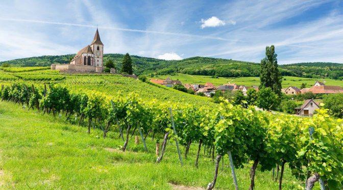 2015 Domaine David Ermel, Empreinte Pinot Noir Barrique, Alsace, Frankrig