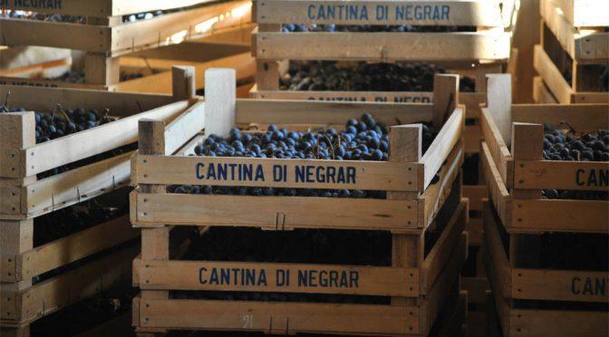 2012 Cantina Valpolicella Negrar, Montigoli Amarone della Valpolicella Classico, Veneto, Italien
