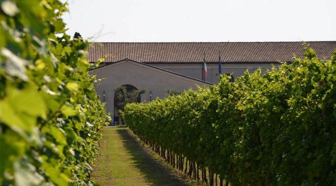 2006 Guerrieri Rizzardi, Amarone della Valpolicella Classico Calcarole, Veneto, Italien