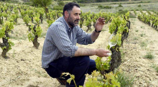 2016 Bodegas Abel Mendoza Monge, Jarrarte Maceración Carbónica, Rioja, Spanien