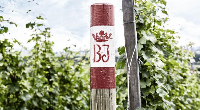2017 Weingut Geheimer Rat Dr. Von Bassermann-Jordan, Riesling Trocken, Pfalz, Tyskland