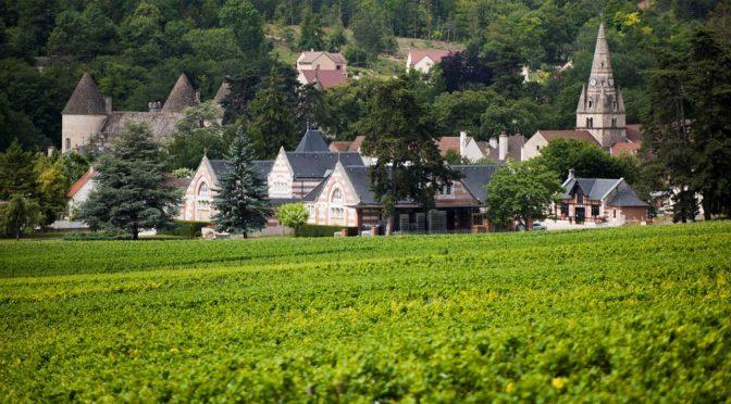 2017 Domaine Machard de Gramont, Savigny-Les-Beaune 1. Cru Aux Vergelesses, Bourgogne, Frankrig