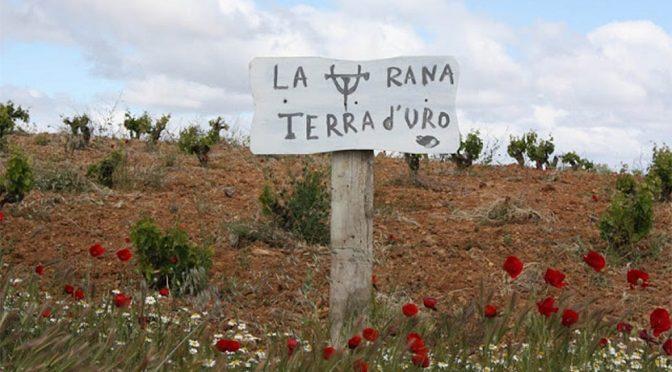 2014 Terra d'Uro, Uro, Toro, Spanien
