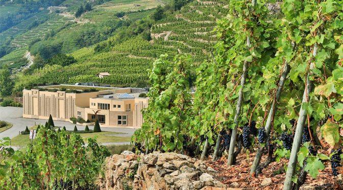 2018 Vidal-Fleury, Côtes-du-Rhône Blanc, Rhône, Frankrig