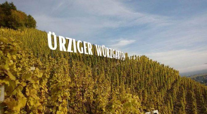 2018 Weingut Karl Erbes, Ürziger Würzgarten Riesling Feinherb, Mosel, Tyskland