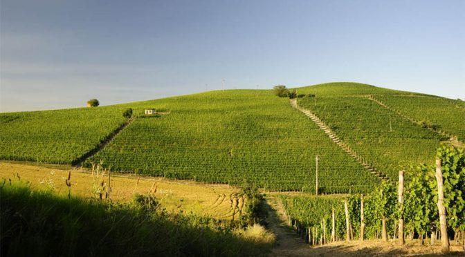 2014 La Biòca, Barolo Ravera, Piemonte, Italien
