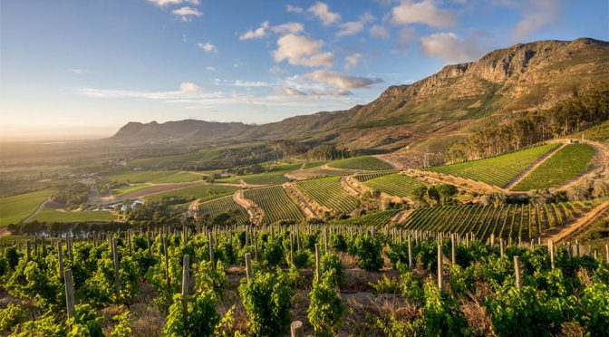 2017 Klein Constantia, CV2 Special Selection Cabernet Sauvignon Merlot, Western Cape, Sydafrika