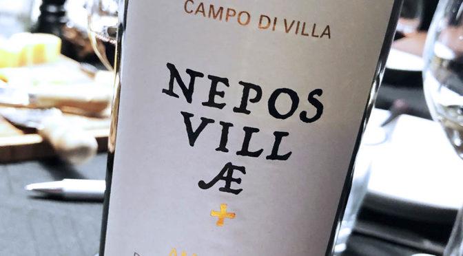 2013 Nepos Villae, Campo di Villa Amarone of Valpolicella Classico, Veneto, Italien