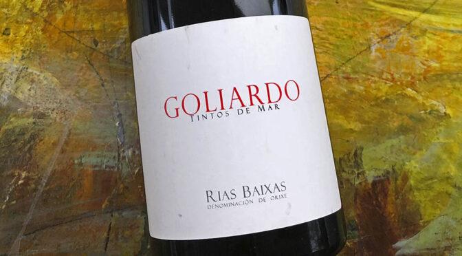 2018 Bodegas Forjas del Salnés, Goliardo Tinto, Rías Baixas, Spanien