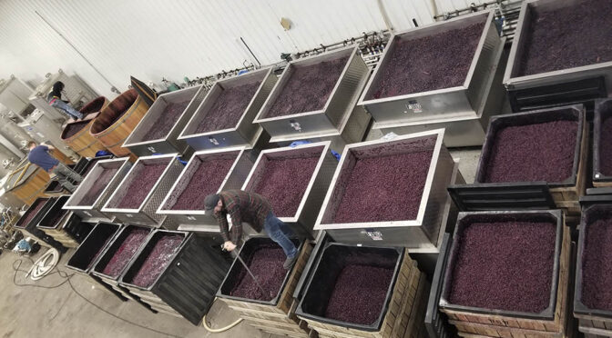 2016 Ravines Wine Cellars, Maximilien, New York, USA