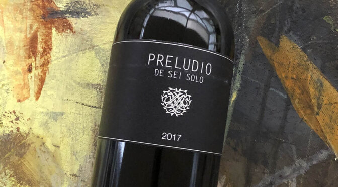 2017 Bodega Sei Solo, Preludio, Ribera del Duero, Spanien