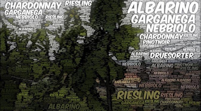 Nyt på Houlbergs Vinblog … oversigt over druer