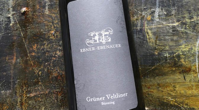 2019 Weingut Ebner-Ebenauer, Bürsting Grüner Veltliner Reserve, Niederösterreich, Østrig