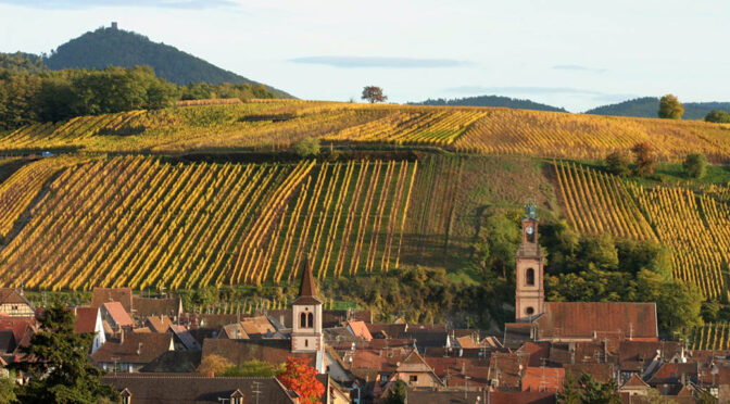 2016 Domaine Bott-Geyl, Pinot Gris Grand Cru Sonnenglanz, Alsace, Frankrig