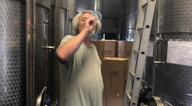 2019 Cantina Filippi, Vin da Góti 1 liter, Veneto, Italien