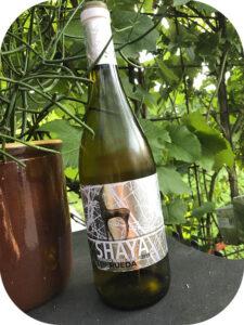 2019 Bodegas Shaya, Shaya Verdejo, Rueda, Spanien