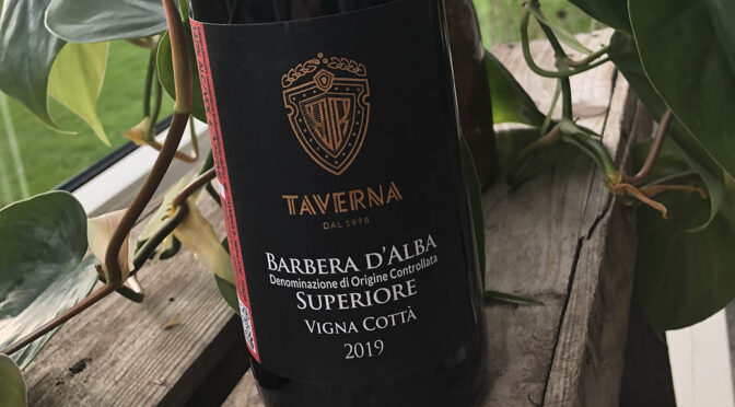 2019 Taverna Wines, Barbera d'Alba Vigna Cottà, Piemonte, Italien
